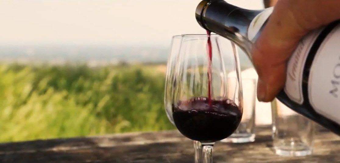 Vignoble Au Coeur
