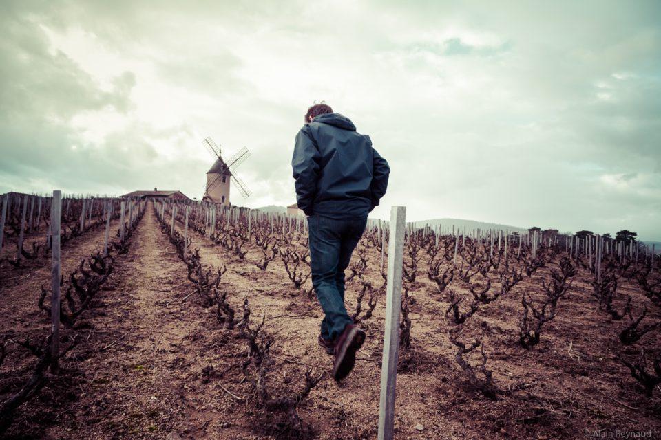 Vignoble Aucoeur - 2018